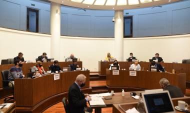 El Concejo reconoció a la Mesa de Mujeres por la Paridad