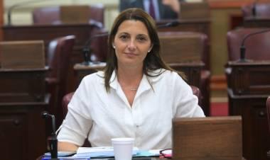 La diputada Florito pide que el ministro Sain vaya al recinto