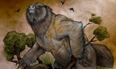 Se halló el MEGATERIO más antiguo de la Argentina