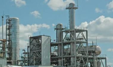 Biocombustibles: fabricantes reclaman definiciones al Gobierno por ley para el sector